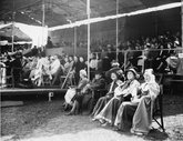 The grandstand at the Carlisle Pageant, 1951